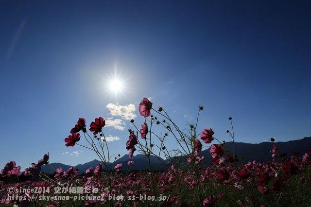 1U4A4669_result.jpg